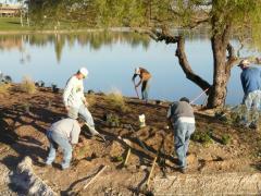 Fountain Hills, AZ Downtown Greening Project Volunteers