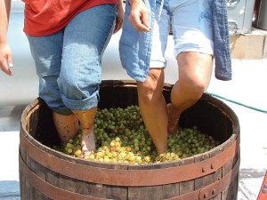 Fountain Hills Great Grape Stomp