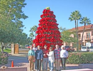 Fountain Hills, Arizona, Pointsettia Tree, Fountain Hills Cultural and Civic Association
