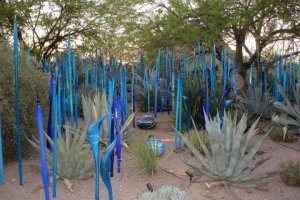 Desert Botanical Garden features Chihuly Glass