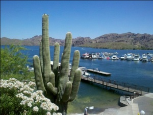 Saguaro Lake Marina Offers a host of services and dining