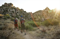 Hiking through the Sonoran Desert on a trail