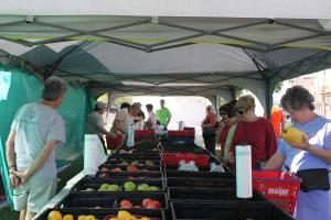 #10 Lrg Pic Farmers Market