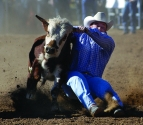 Rodeo_Calf_Wrestler_jpg