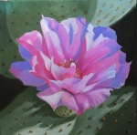 sept-10pink-cactus-flower