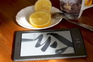 nov-13-kindle-e-reader