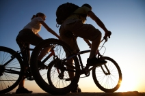 sports - mountain bikers